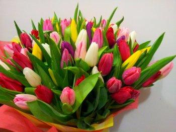 Мэр Цхинвала поздравил прекрасную половину человечества с 8 марта